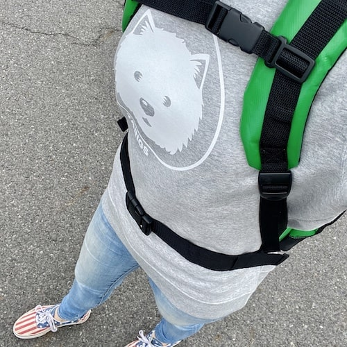 Sac à dos pour chien avec ceinture et sangle de poitrine