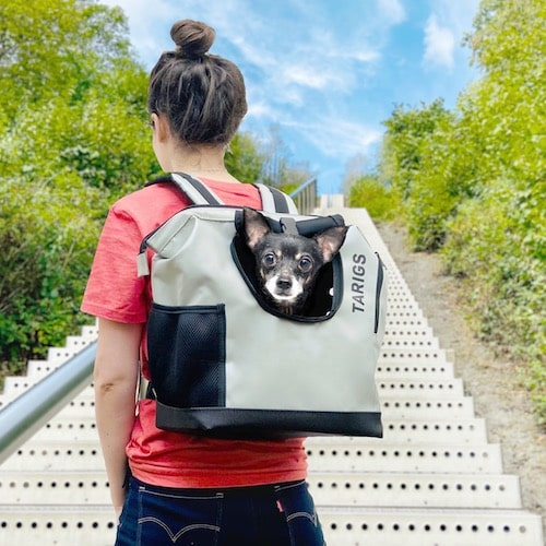 TARIGS Backpack for Chihuahua