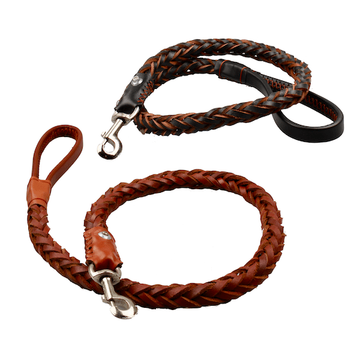 Leather leash for large dogs