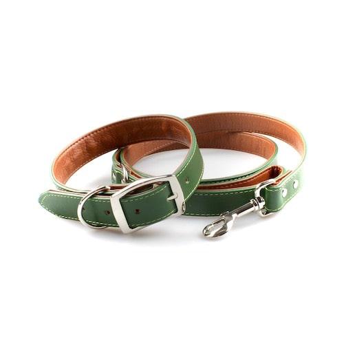 Halsband & Leine Mossy Green Grün / Braun