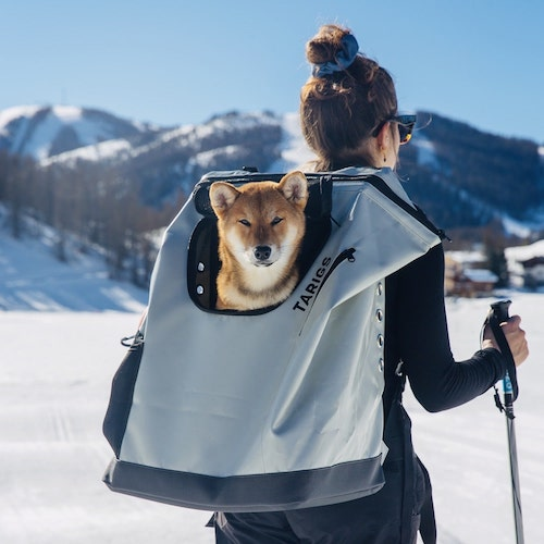 Dog carrier backpack for large dogs up to 16 kg, Shiba Inu