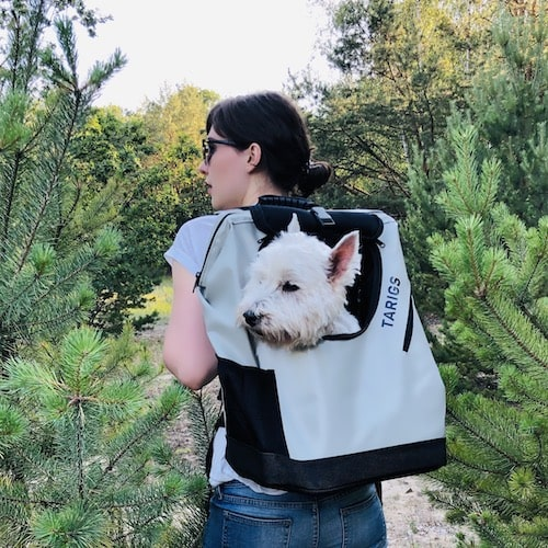 Hiking backpack for dogs