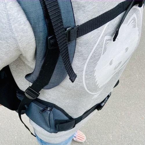 Dog carrier backpack with hip fins