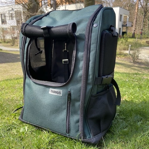 Dog backpack with 3 windows