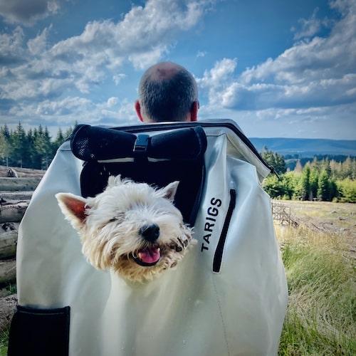 Summertime Dog Carrier Backpack