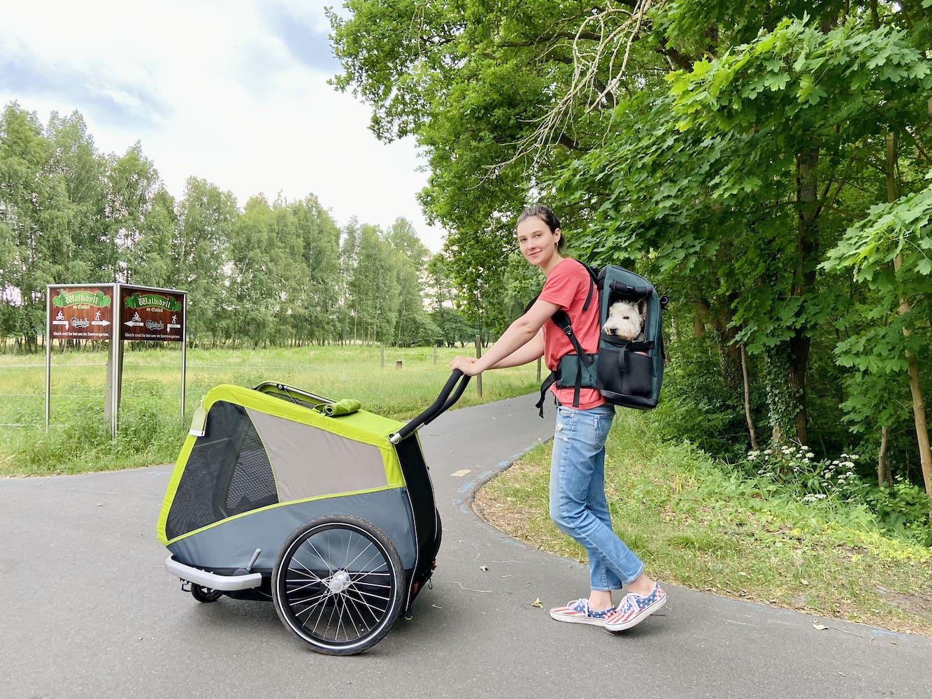 Dog carrier backpack vs pet stroller